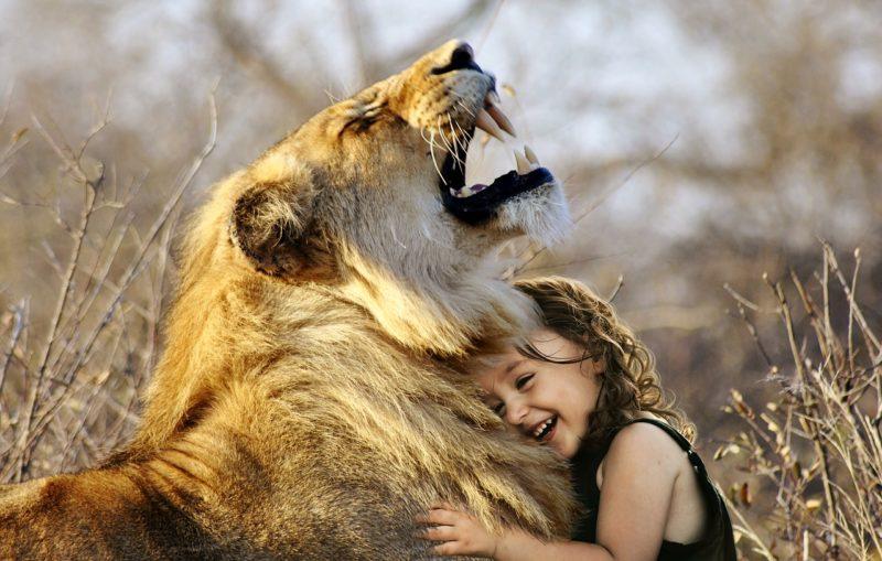 動物愛護デー