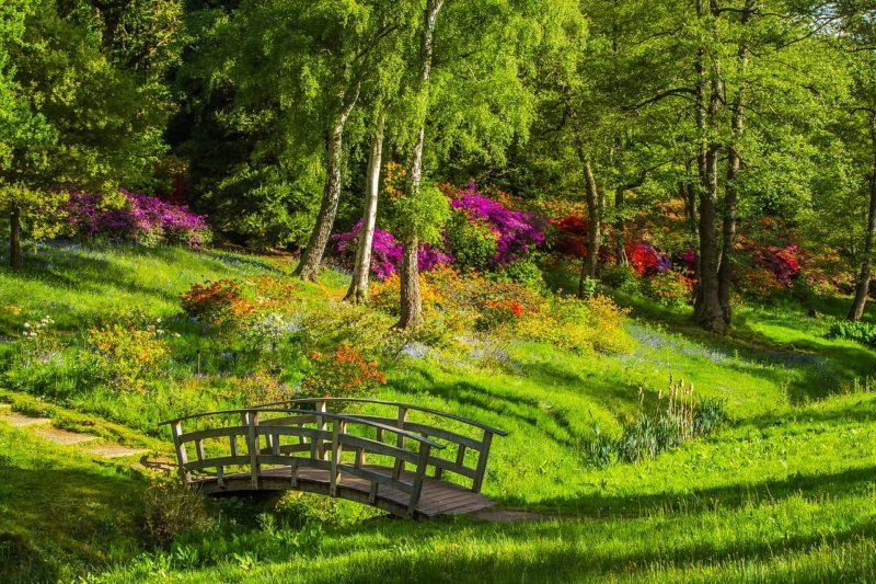 自然公園の日